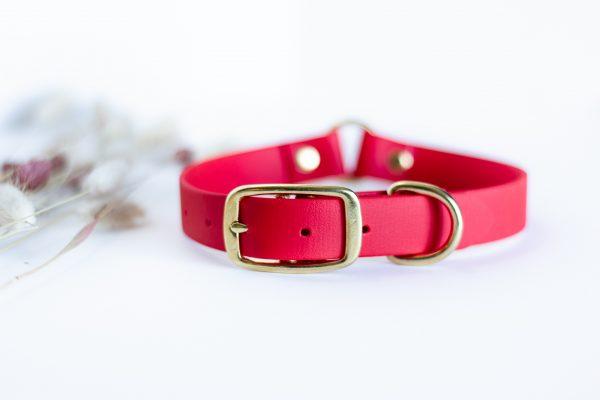 Safety biothane collar